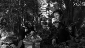 dmdkiulidt-1_c_subobscura-films
