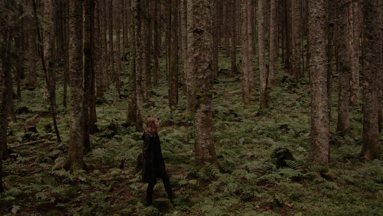 Waldszenen © sixpackfilm / Annja Krautgasser
